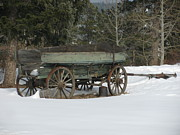 Bi-cycle Photos - This Old Wagon by Steven Parker