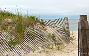Sand Fences Photos - This Way to the Beach by Michelle Wiarda
