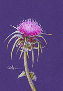 Diane Cutter Paintings - Thistle by Diane Cutter
