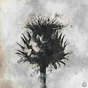 Grey Background Prints - Thistle Print by Gun Legler