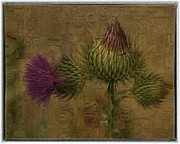 Kristal Kraft - Thistle Inspiration