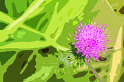 Garden Scene Digital Art Posters - Thistle Poster by Nancy Merkle