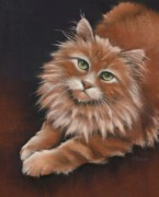 Orange Cat Pastels Posters - Thomas Poster by Cynthia House