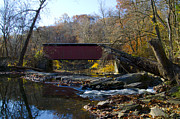 Fairmount Park Prints - Thomas Mill Covered Bridge in Fairmount Park Print by Bill Cannon