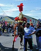 Thoth Photos - Thoth Parade Rider by Lizi Beard-Ward