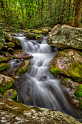 Smokey Mountains Prints - Though the rocks Print by Todd Bielby