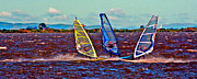 Wind Surfing Art Posters - Three Amigo Windsurfers Poster by Joseph Coulombe