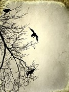 Gothicolors Donna Snyder - Three And A Tree