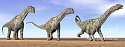 Three Dimensional Art - Three Argentinosaurus Dinosaurs by Elena Duvernay