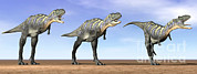 Three Dimensional Digital Art - Three Aucasaurus Dinosaurs Standing by Elena Duvernay