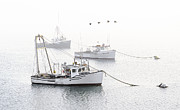 Boats In Harbor Posters - Three Boats Moored in Soft Morning Fog  Poster by Marty Saccone