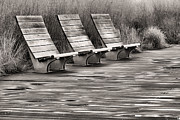 Park Benches Photos - Three BW by JC Findley