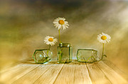 Daisy Digital Art Metal Prints - Three daisies Metal Print by Veikko Suikkanen