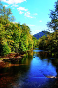 Williams River Scenic Backway Prints - Three Forks Williams River Early Fall Print by Thomas R Fletcher