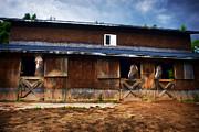 Dan Friend - Three horses in a barn