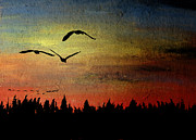Waterfowl Pastels - Three in Flight by R Kyllo