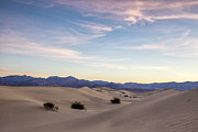 Mesquite Flat Dunes Posters - Three in the Sand Poster by Jon Glaser