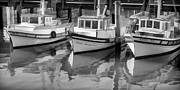 Painterly Prints - Three Little Boats Black and White Print by Scott Campbell