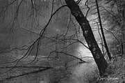 David Gordon - Three Mile River