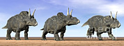Three Dimensional Digital Art - Three Nedoceratops Standing by Elena Duvernay