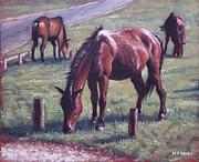 Brown Horse Posters - Three New Forest Horses On Grass Poster by Martin Davey