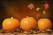 Autumn Leaves Photos - Three Pumpkins by Christopher and Amanda Elwell