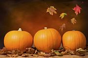 Three Pumpkins Print by Christopher and Amanda Elwell