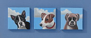 Boxer Puppy Paintings - Three Pups by Stuart Swartz