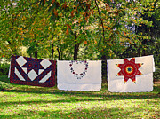 Bed Quilts Art - Three Quilts by Jean Hall