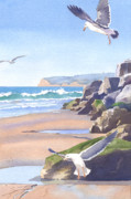 Seagull Paintings - Three Seagulls at Coronado Beach by Mary Helmreich