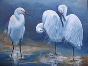 Sea Birds Paintings - Three Snowy Egrets by Kathleen Tucker