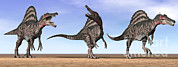 Three Dimensional Digital Art - Three Spinosaurus Dinosaurs Standing by Elena Duvernay