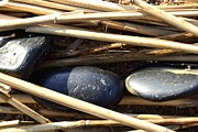 Natural Ocean Life Originals - Three stones on seagrass by Tommy Hammarsten