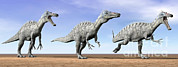 Three Dimensional Digital Art - Three Suchomimus Dinosaurs Standing by Elena Duvernay