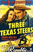 John Wayne Prints Drawings Framed Prints - Three Texas Steers Framed Print by Pg Reproductions