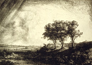 Dry Point Posters - Three Trees - Holland 1643 Poster by Padre Art