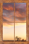 Country Prints - Three Trees Sunrise Barn Wood Picture Window Frame View Print by James Bo Insogna