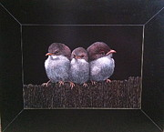 Baby Bird Mixed Media Framed Prints - Three Tweets Framed Print by Betsy Frahm