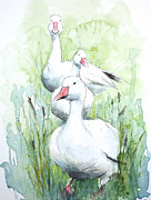 Geese Paintings - Three White Geese by Patricia Henderson