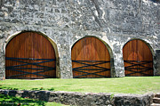Castillo San Cristobal Posters - Three Wooden Doors Poster by Wendy M Hansen-Penman
