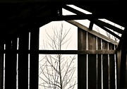 Tin Roofs Framed Prints - Through the Barn Loft Framed Print by Greg Jackson