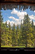 Cabin Window Framed Prints - Through the Cabin Window Framed Print by Anjanette Douglas