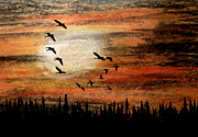 Canadian Geese Pastels - Through the Haze by R Kyllo
