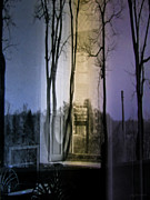 Dreamy Expression Posters - Through the Trees Poster by Colleen Kammerer
