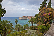 Travel Photo Prints - Through the Trees in Dubrovnik Print by Madeline Ellis