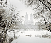 Nyc Snow Prints - Through Winter Trees - Central Park - New York City Print by Vivienne Gucwa