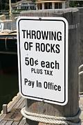 Throwing Rocks Print by David Freuthal