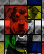 Dog Rescue Digital Art - Thru The Looking Glass by Rachel Katic