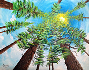 Rays Paintings - Thru The Pines by Jim Bowers