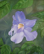 Water Lilies Framed Prints Prints - Thumbergia study Print by Anne Brookover